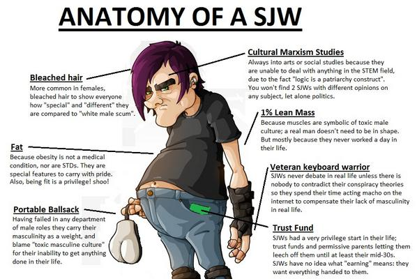 what is a social justice warrior sjw